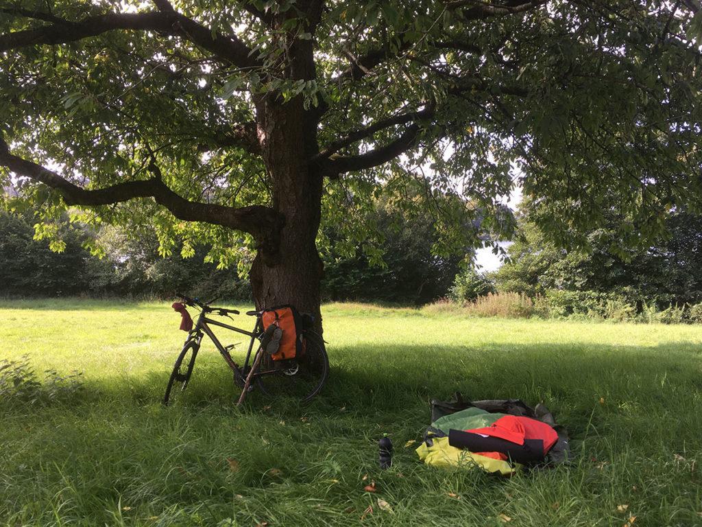 Fahrrad unter altem Baum Beitragsbild © Dagmar Falk